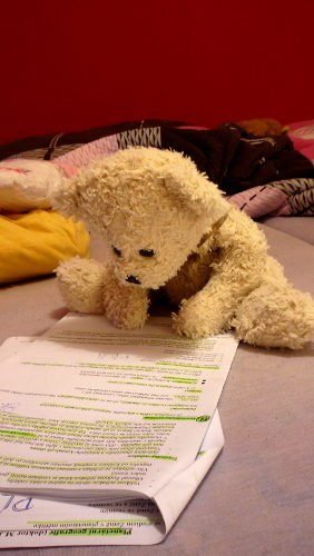 Poor teddy he has to study hard, por ~Tedinecka en DevianArt.